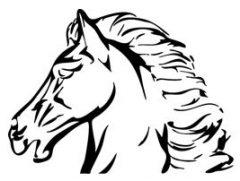 EquiVetInfo: Naturwissenschaftliche Informationen zu Pferdekrankheiten